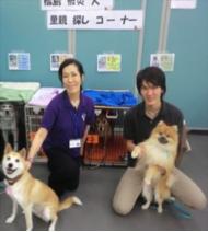Dog Camp Festa譲渡会